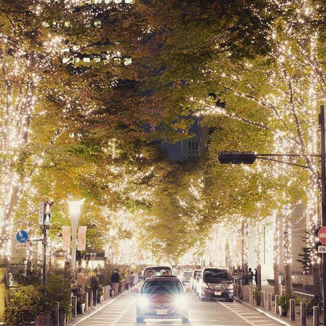 Instagram【hirotaka_00】さんの写真をピンしています。 《丸の内イルミネーション2016  #写真好きな人と繋がりたい #pentax #pentaxk1 #love #follow #tagsforlikes #tflers #instagood #instalike #beautiful #風景 #きれい #japan #tokyo #東京 #夜景 #イルミネーション #丸の内 #丸の内仲通り #丸の内イルミネーション2016》