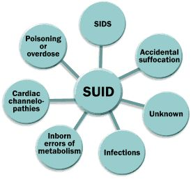 SUID possible causes: Poisoning or overdose, SIDS, Accidental suffocation, Unknown, Infections, Inborn errors of metabolism, Cardiac channelopathies.