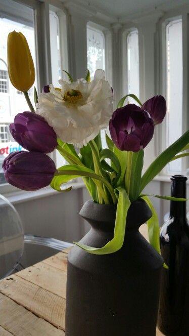 Tulips and Renuncules