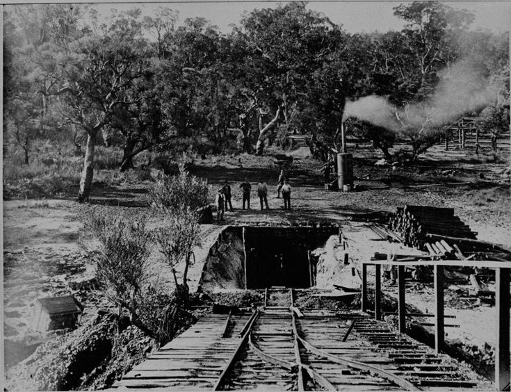 024827PD: The Proprietary Mine entrance, 1906 http://encore.slwa.wa.gov.au/iii/encore/record/C__Rb3507698?lang=eng