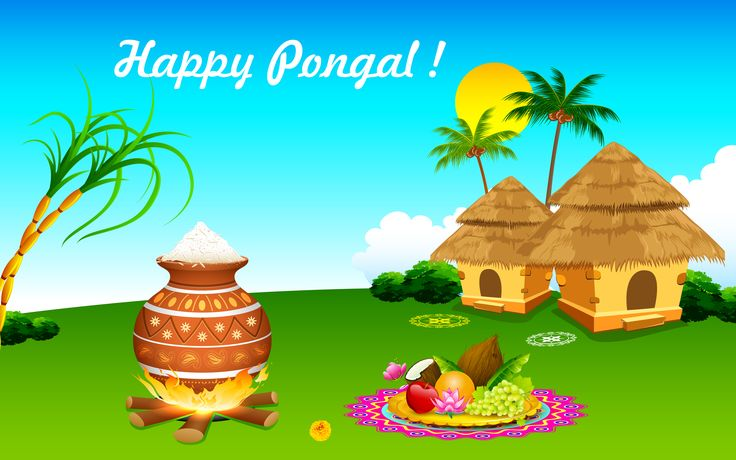 pongal festival essay in english Makar sankranti essay in hindi, english and marathi essay on makar sankranti for pongal, uttarayan but all these festival resembles same trust and belief and all.