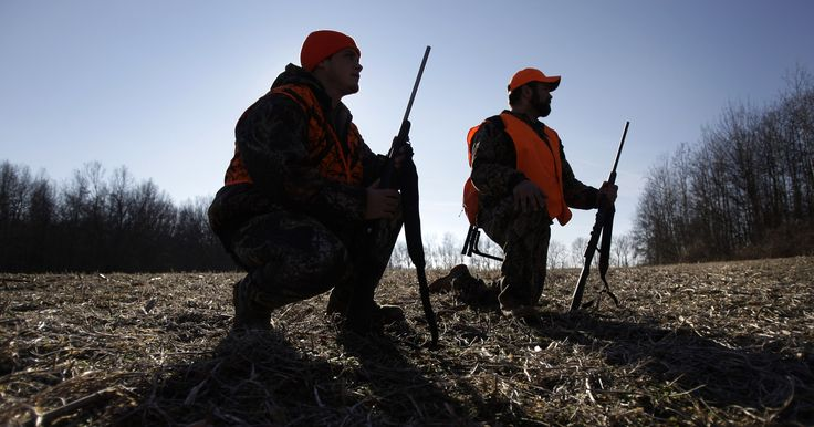 Hunters, government, industry at odds over deer urine