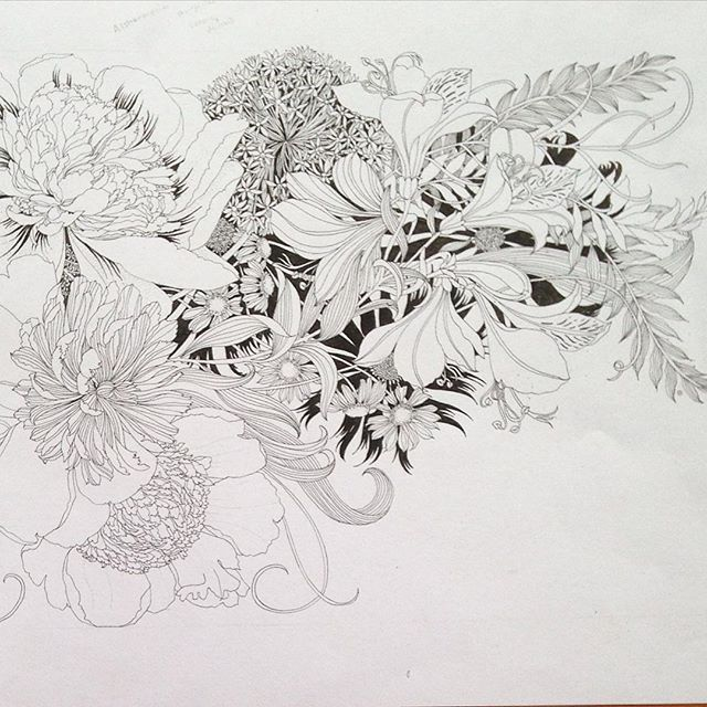 alstroemeria coloring pages - photo#9