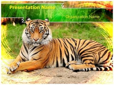 60 best animals and pets powerpoint templates images on pinterest bengal tiger powerpoint template is one of the best powerpoint templates by editabletemplates toneelgroepblik Images