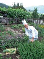 Vegyszermentes kertészkedés  konyhakert