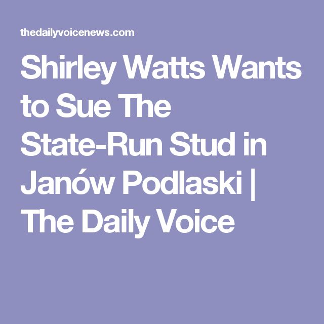 Shirley Watts Wants to Sue The State-Run Stud in Janów Podlaski | The Daily Voice