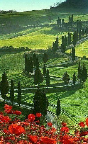 Val D'Orcia ~ Tuscany, Italy