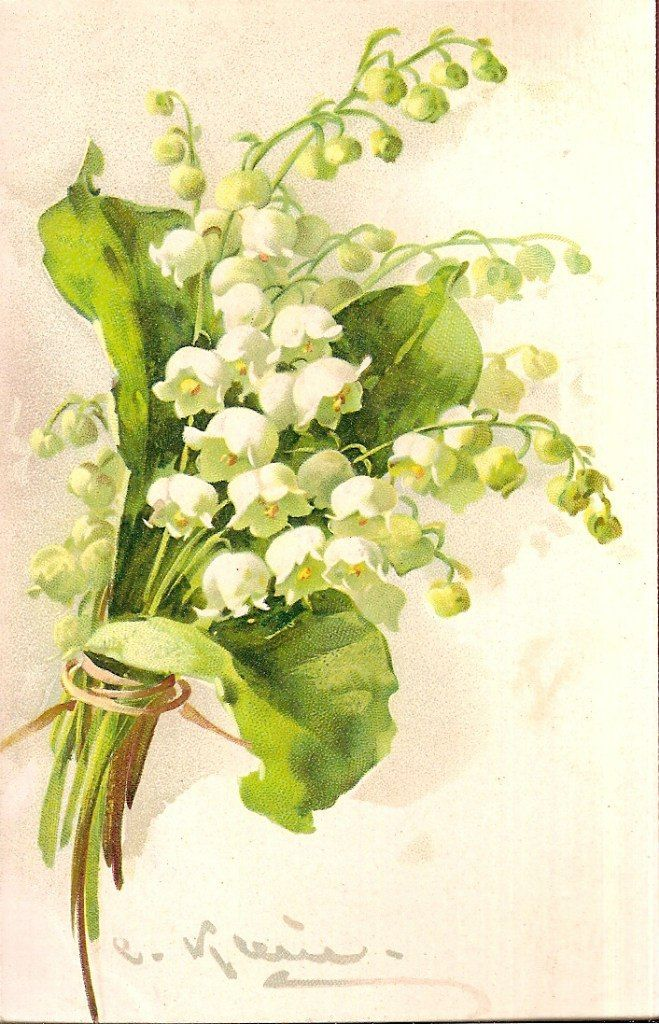 Lily of the valley watercolor.