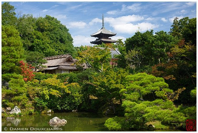Pagoda and tea house in Ninna-ji zen garden (仁和寺)