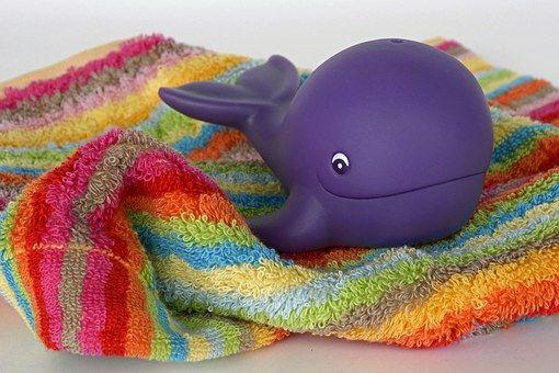 En primer lugar, muchos de nosotros hemos de saber que es un cetáceo, todos conocemos a las ballenas y los delfines, pero la palabra c...