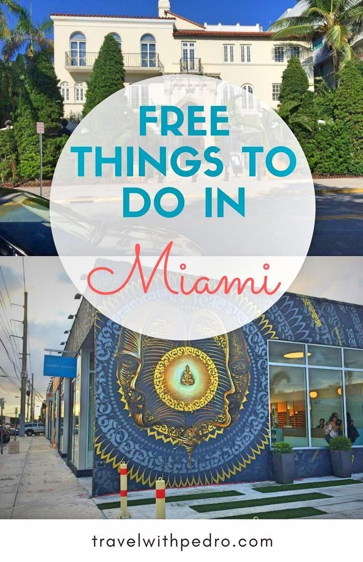 11 Free Things To Do In Miami Travel With Pedro Miami Travel Miami Travel Guide Free Things To Do