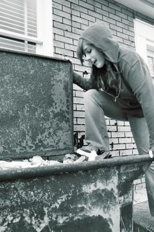 An Elitests Guide to Dumpster Diving-Okay, and now to the fun part, what to find and where to find it.    You never know what or why people are dumping what they do. They may be doing their spring cleaning, they may be moving or remodeling, or got evicted, their girlfriend may be...
