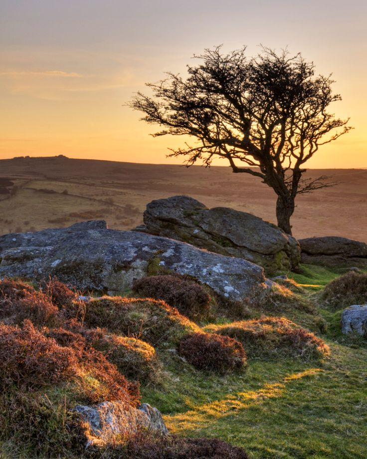 North Saddle Tor, Dartmoor, Devon - I grew up just a short walk from the edge of Dartmoor and I had many happy times there in my girlhood. I miss Dartmoor terribly.