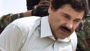 Venay Magen   Guiarist: Venay Magen found a news about 'El Chapo' secretly...