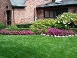 Landscaping : Small Landscaping