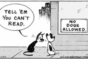 The adorable little stars from Mutts Comic Strip