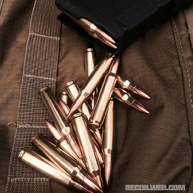 Ammo.... for hairy primates? Works for us!  We put it through the paces--check out our review of Gorilla Ammunition on recoilweb.com  #556 #223 #recoilmagazine #AR15 #ammunition