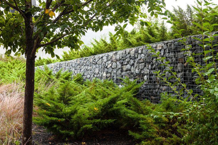 Best 20 gabion cages ideas on pinterest for Gabion landscaping