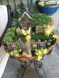Miniature Fairy Garden …