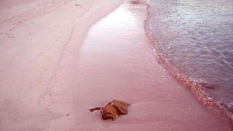 Οι οκτώ πιο όμορφες ροζ παράλιες - Οι δυο στην Κρήτη! [ΦΩΤΟ]   TVXS - TV Χωρίς Σύνορα