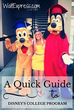 A Quick Guide to The Disney College Program