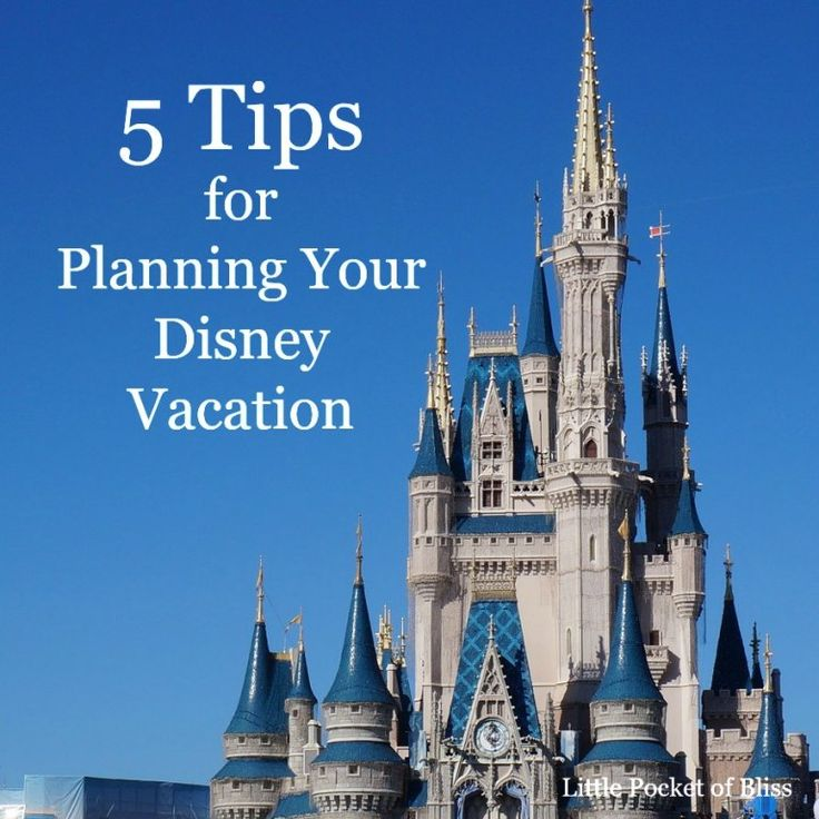 how to become an authorized disney travel agent
