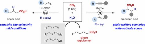 Site-Selective Catalytic Carboxylation of Unsaturated Hydrocarbons with CO2 and Water