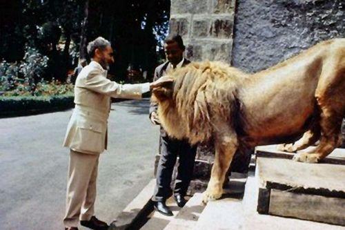 H.I.M. Haile Selassie I Lion1 H.I.M. Haile Selassie I, and his Lions