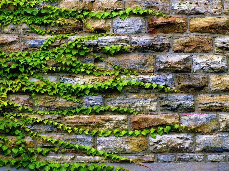 Rock Wall Garden | Landscaping Boyertown PA, Secret Garden Landscape,  Gilbertsville .