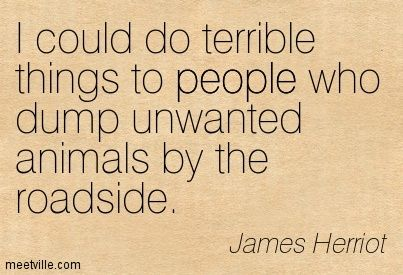 wife abuse quotes | James Herriot quotes and sayings