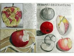 art and design gcse - unable to find the source of this image :(