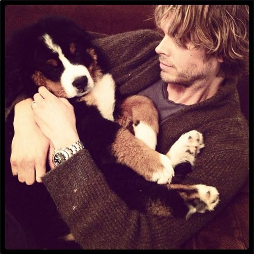 "iheartncisla:    eric christian olsen ‏@ericcolsen  Best uncle ever. ""@AAnissimova: @ericcolsen @danielaruah Who is that adorable puppy in ur arms"