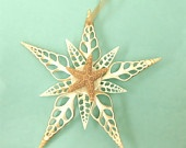 Beach Ornament or Decoration - Large Seashell Christmas Ornament