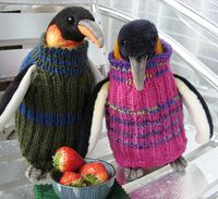 Love this - remember the appeal for knitted penguin sweaters? Completely useless (thanks to Jemimah Knight for link)