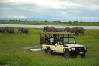 8 Day: Zambia Family Safari - www.PureSafari.com