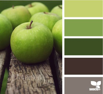 apple hues for living room .  walls grey ,entertainment stand dark green , the end tables and couches are brown . then make the throw pillows the other green mixed with cream