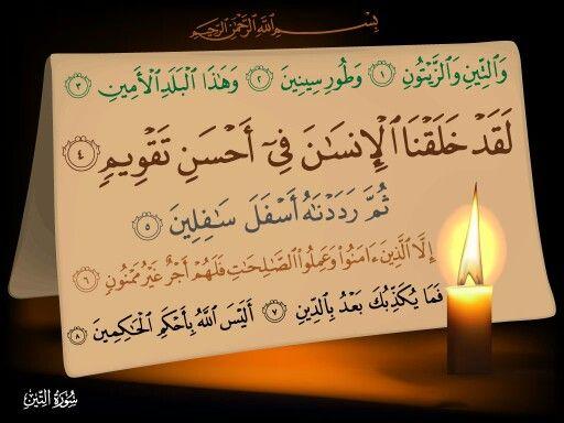 #Qur'an