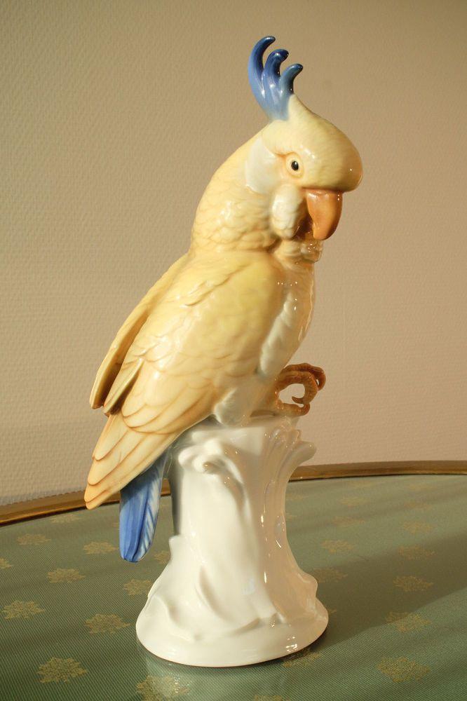 die besten 25 ara papagei ideen auf pinterest papagei spielzeug papagei englisch und projekt ara. Black Bedroom Furniture Sets. Home Design Ideas