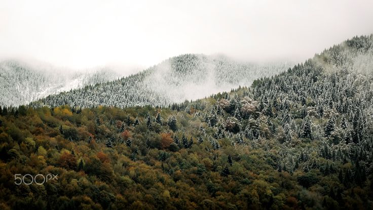 Between Seasons - Between seasons in Bucovina , Romania