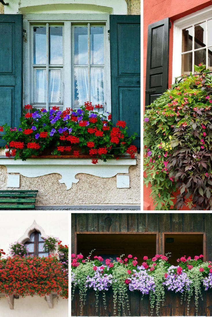25 beautiful balcony flower box ideas on pinterest railing