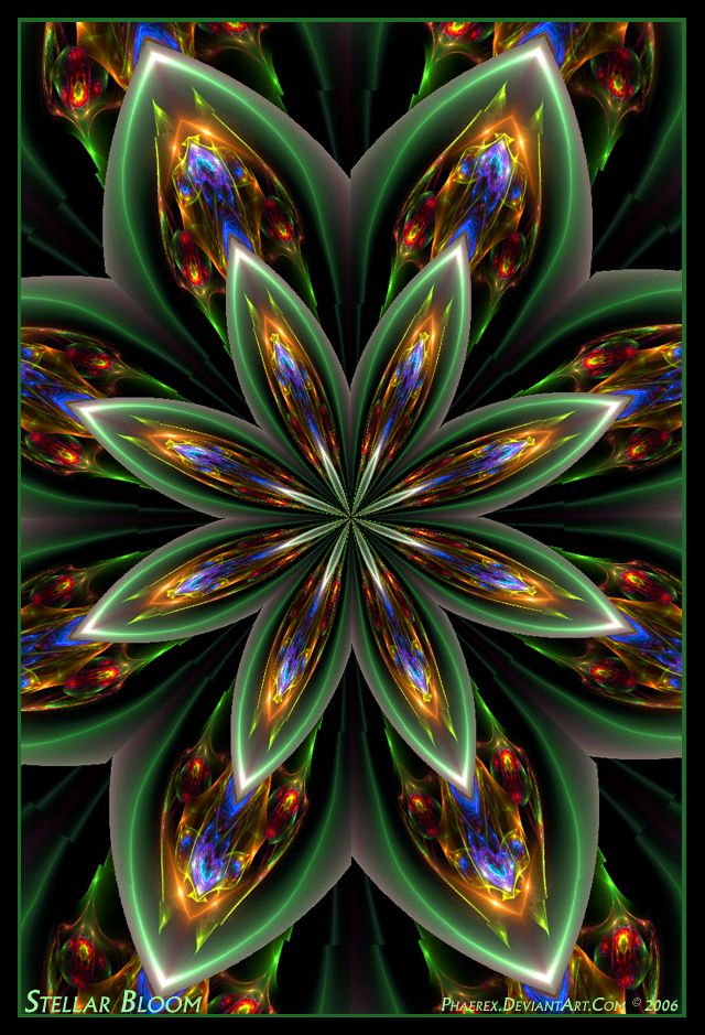 Stellar Bloom by Phaerex on DeviantArt