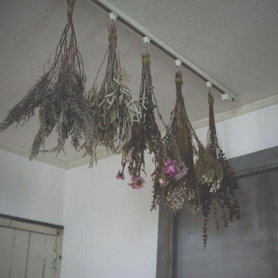 簡単吊るすだけ!きれいに長持ちするドライフラワーの作り方 - 北欧、暮らしの道具店