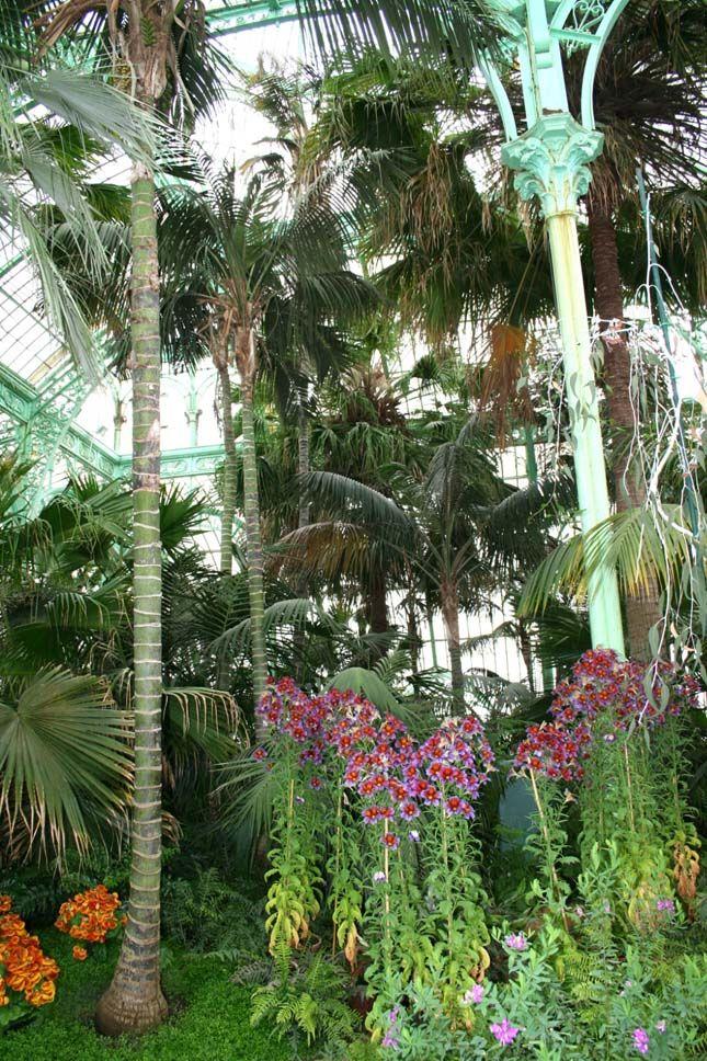 botanikus kertek