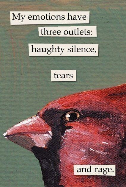 Emotions  bird MAGNET by MincingMockingbird on Etsy, $4.50 Again, awesome.