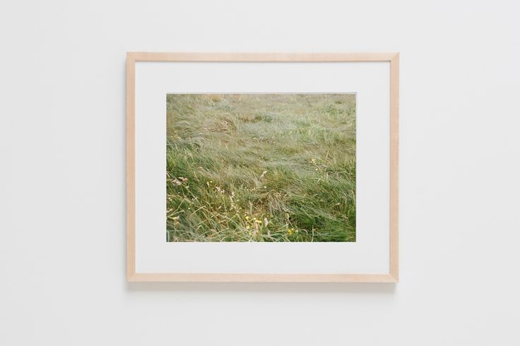 Grass print - looks good huge