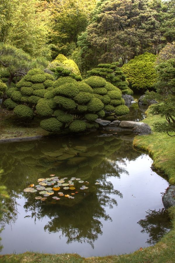 Reflections. Photo by Bill Bell taken in the Japanese gardens, San Francisco. Via www.500px.com.