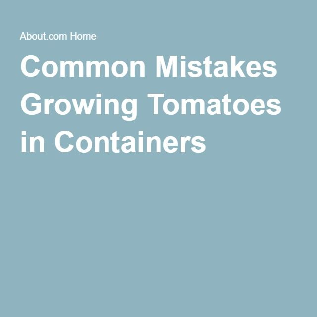 Common Mistakes Growing Tomatoes in Containers and How to Avoid Them