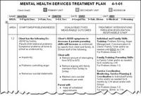 Developing Treatment Plans: The Basics