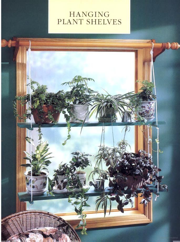 25 best window shelves ideas on pinterest kitchen for Window design solutions