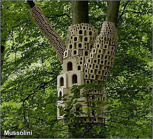 cabane d 39 oiseaux cabanes oiseaux birds house pinterest articles. Black Bedroom Furniture Sets. Home Design Ideas
